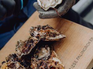 Online oesters kopen